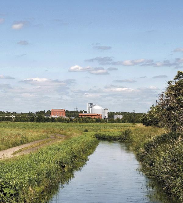 Ablaufgraben für gereinigtes Abwasser im Klärwerk Wansdorf (Foto: Z MEDIA)