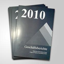 Geschäftsbericht der Stadtwerke Oranienburg 2010